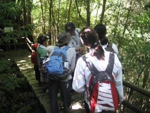 夏休み森林教室&ネイチャークラフト2