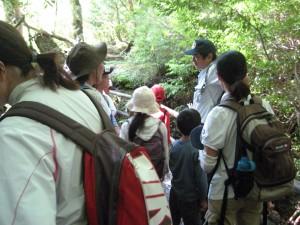 夏休み森林教室&ネイチャークラフト3