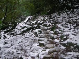 積雪状況1