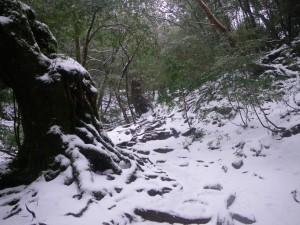 積雪状況2