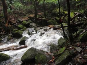 二代大杉前・増水時