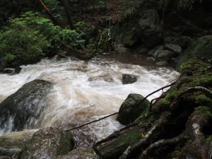 三本足杉付近・増水時