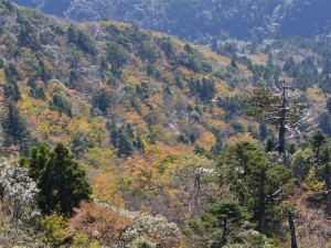 太鼓岩からの眺望3
