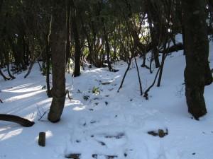 太鼓岩付近の積雪の様子